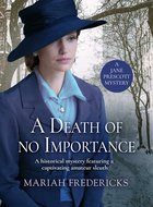 Cover of A Death of No Importance