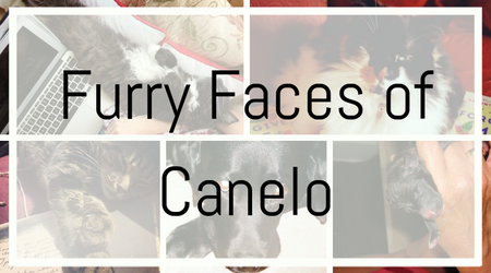 Furry Faces of Canelo
